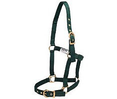 Rancher Halter with Brass Buckles (Black)