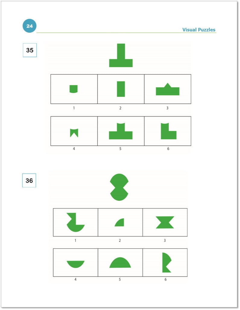 WISC-V visual puzzles