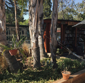 Bart's Books of Ojai » The World's Greatest Outdoor Bookstore