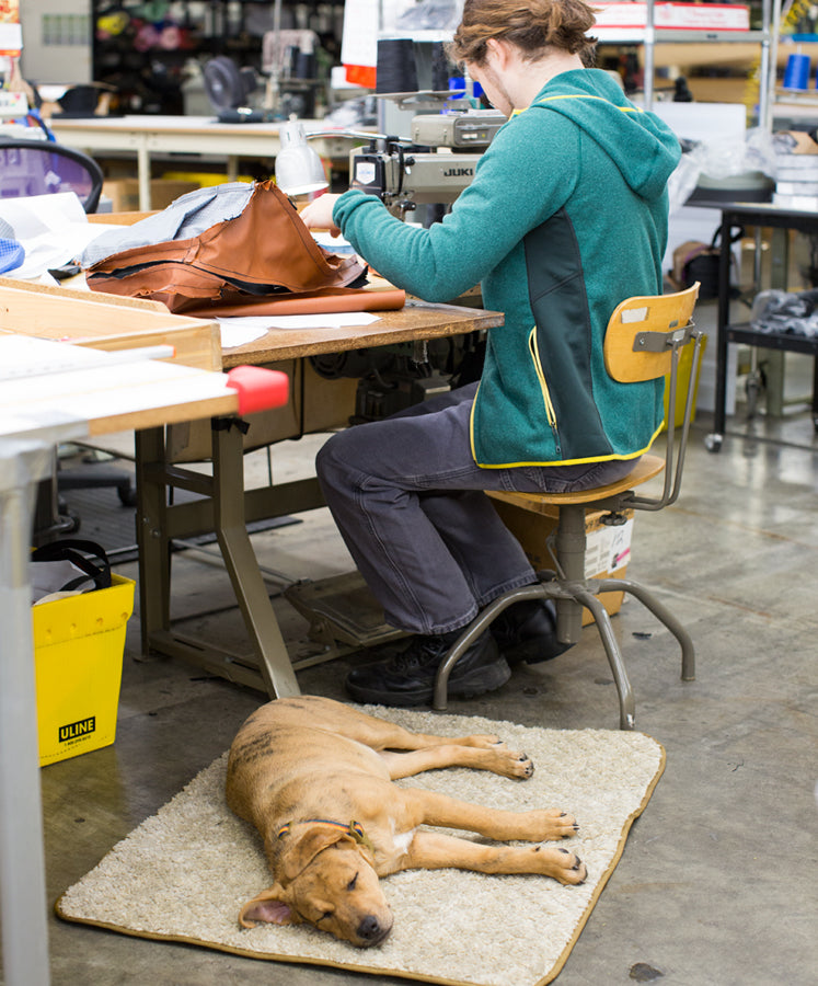 Fiona in the TOM BIHN Factory | Dogs At Work