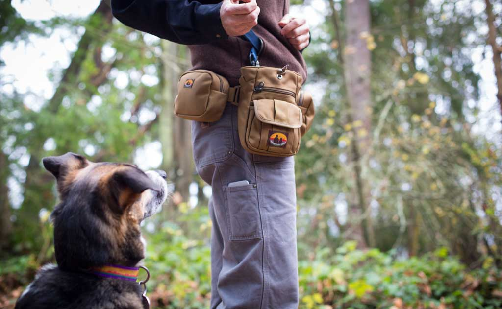 Introducing Citizen Canine Side Pockets | TOM BIHN