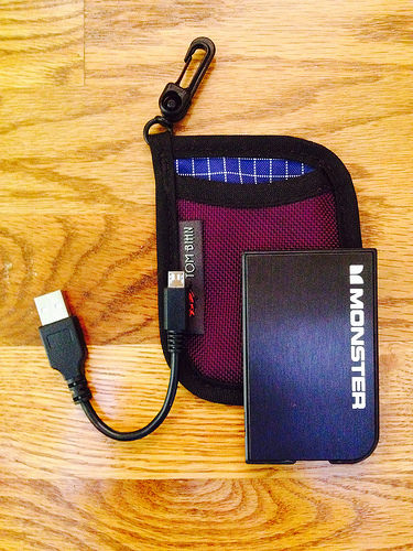 dorayme's Aubergine/Nordic Pocket Pouch, with contents