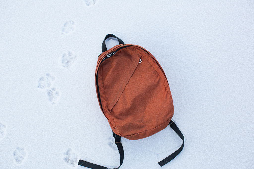 Vintage TOM BIHN Duplex backpack; sewn by Tom back in the mid-1970's.