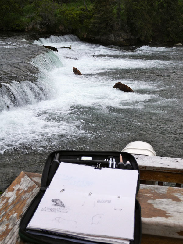 Field Journal Notebook and Bears at Katmai | TOM BIHN