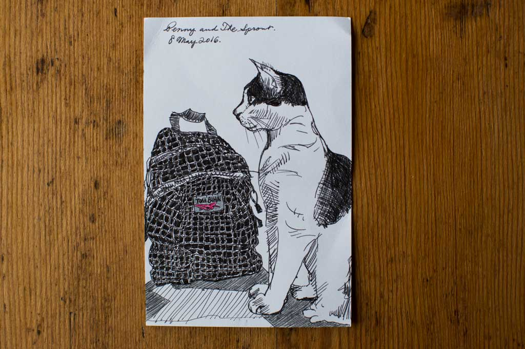 Postcards | TOM BIHN