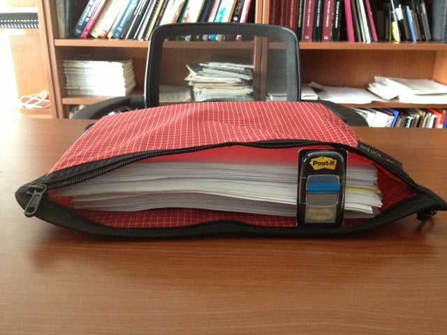 snowbot: Large Organzier Pouch Full of Homework