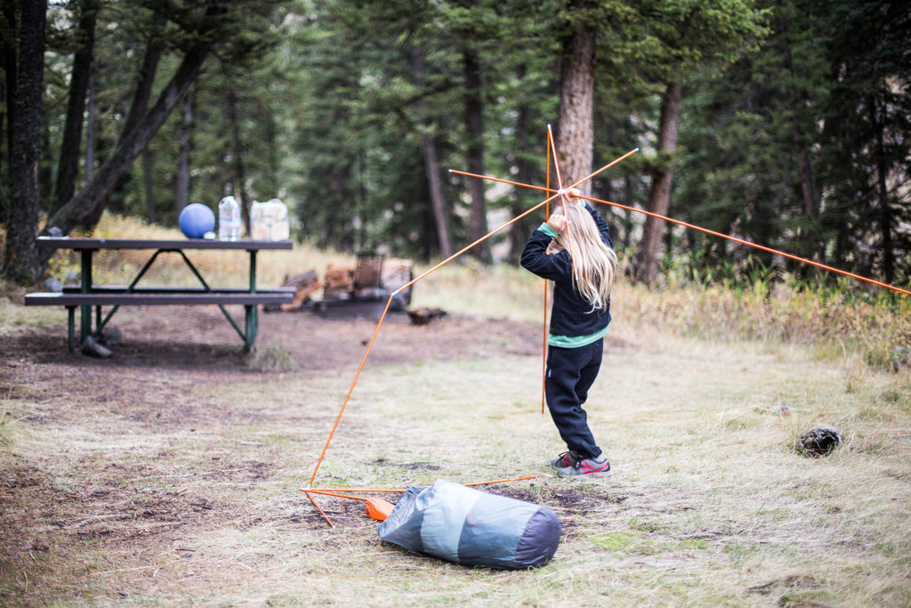 Six Days In Yellowstone and Grand Teton National Parks