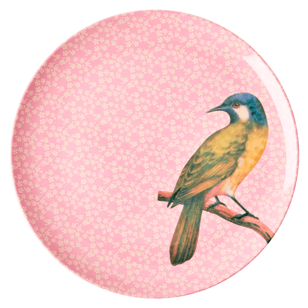 RICE,Kids Melamine Dinner Plate with Vintage Bird Print, Pink,CouCou,Kitchenware