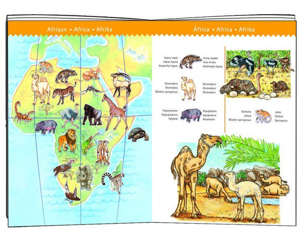 Djeco,Observation World Animals Booklet,CouCou,Toy