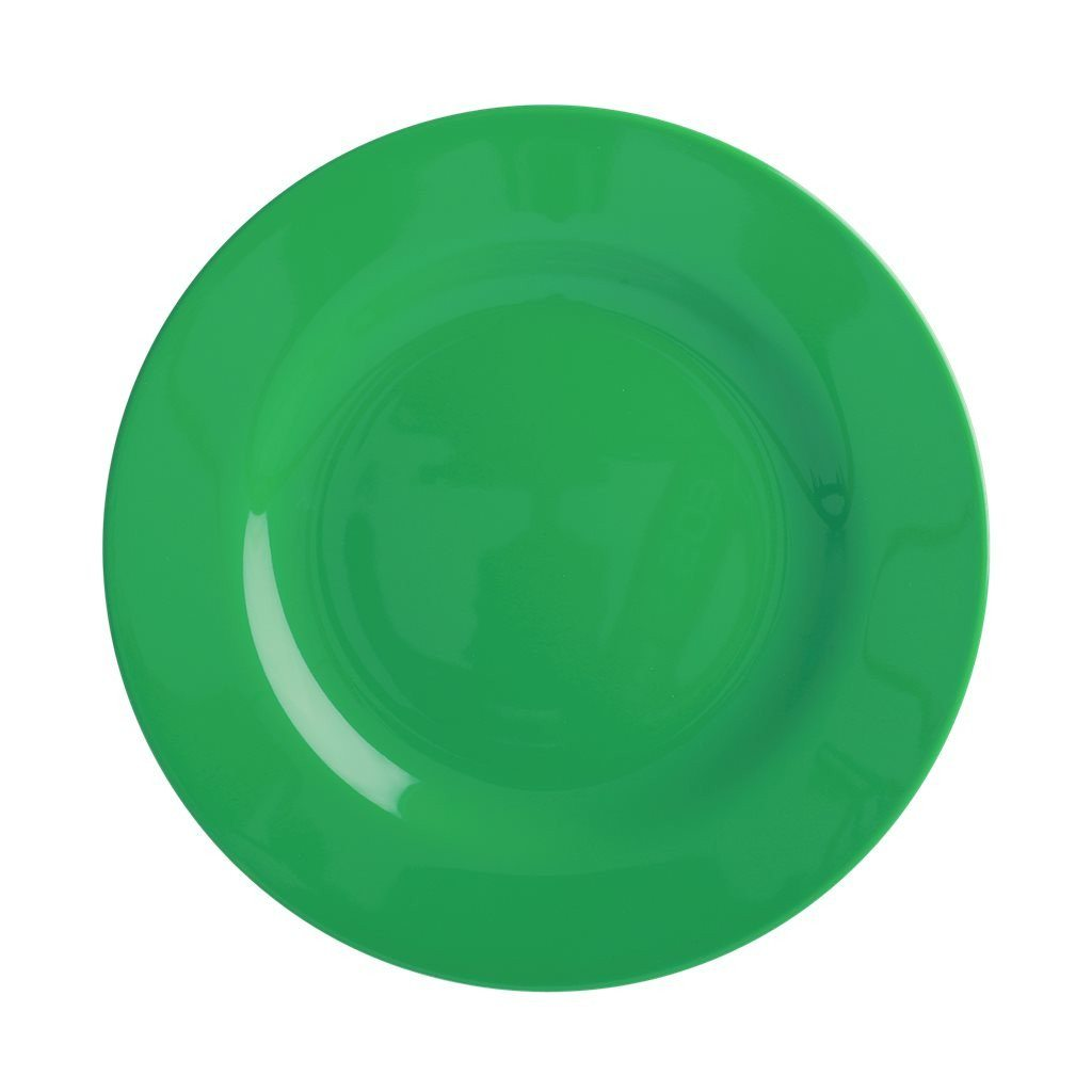 Kids Melamine Lunch Plate in Forest Green