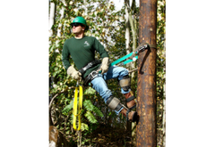 Climbing & Fall Protection