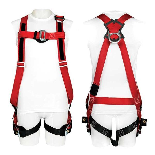 Buckingham Full Body Harness Universal Size - 41-U6494600