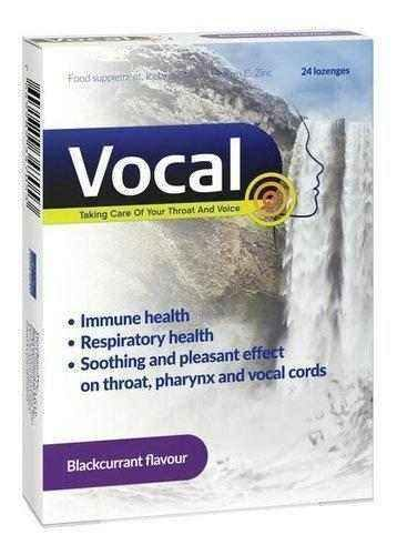 VOCAL Black currant x 24 lozenges - ELIVERA