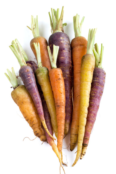 Fresh Organic Rainbow Carrot