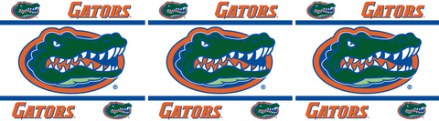Florida Gators Wallpaper Border