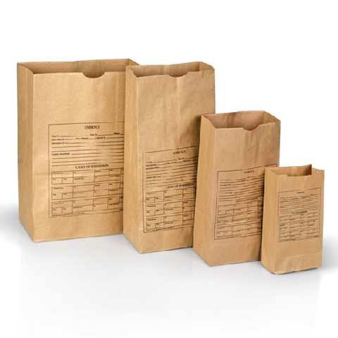 PAPER BAGS, STYLE 4  (100)