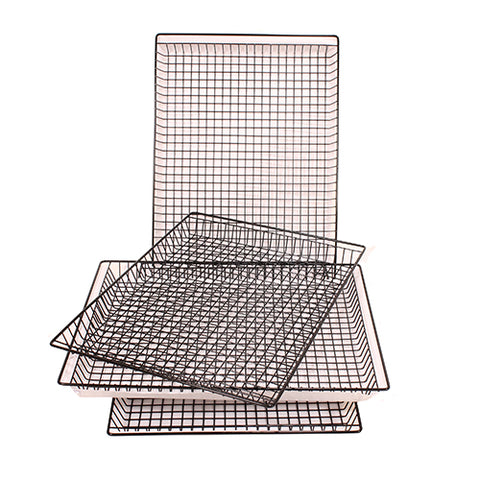 Set of 4 Non-Stick Jerky Racks