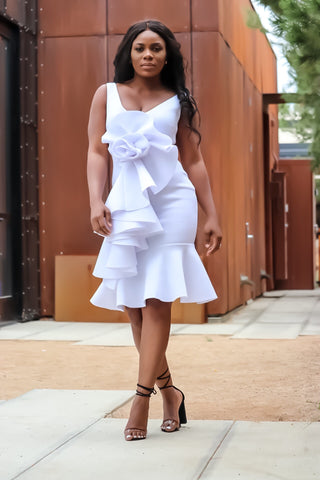 Kimmy Dress (white)