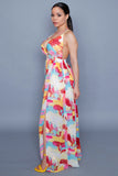 Painters Dream Maxi Dress