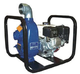 "2"" Portable Gas Centrifugal Trash Pump (12D-GX160)"