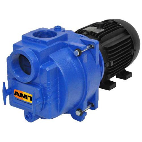 "2"" NPT Sewage/Trash Pump"