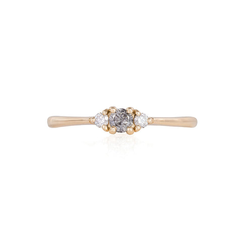 Solid Gold Dreamers of Dreams - Grey Diamond & Classic Diamond Polished Band Ring