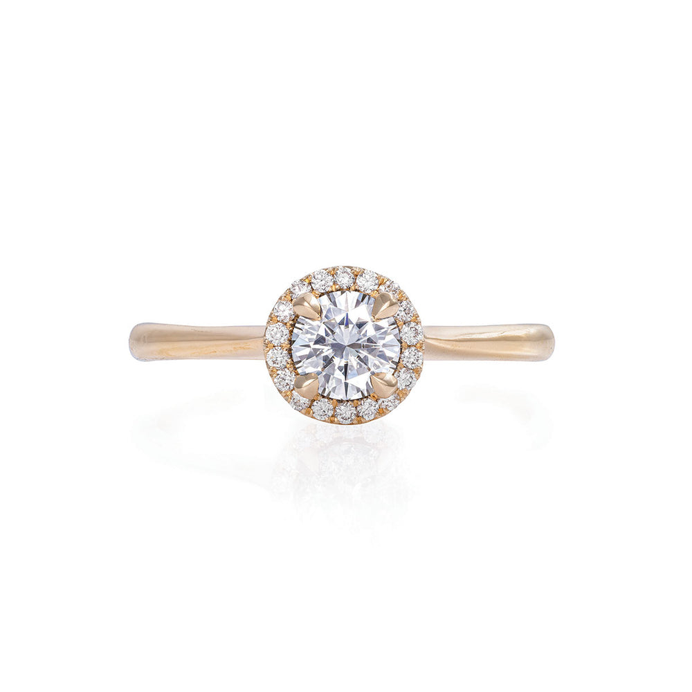 Solid Gold Queen of Hearts - 5mm Moissanite Halo Polished Band Ring