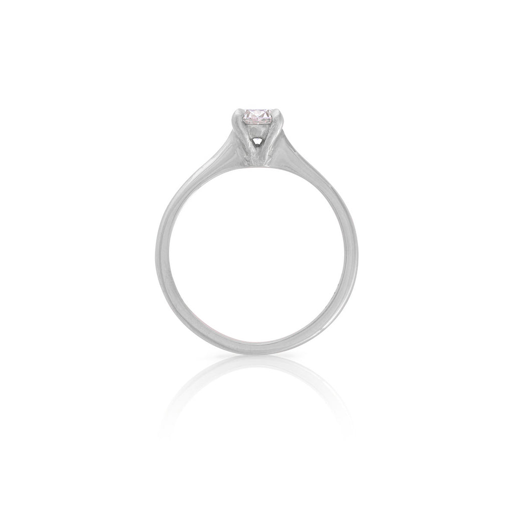 Chupi - Classic Diamond Engagement Ring - Solid White Gold Polished Band - Darling in the Wild