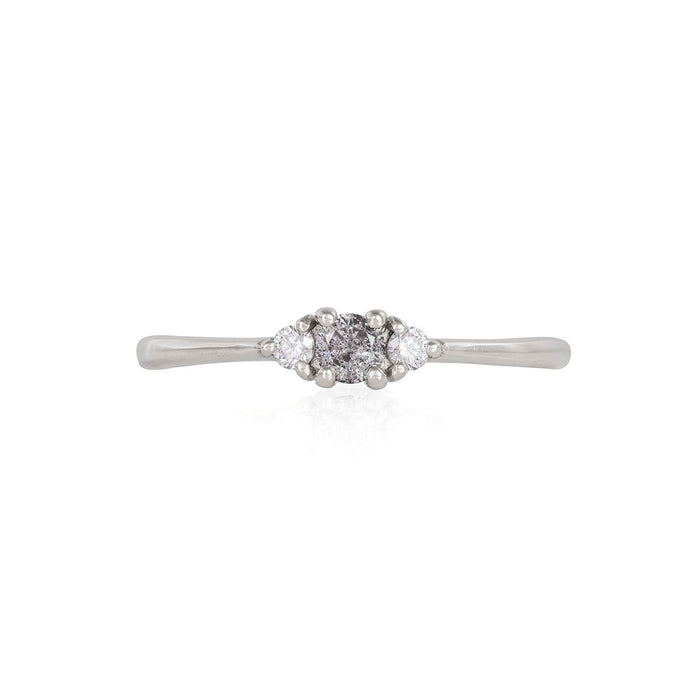 Dreamers of Dreams - 14k Polished White Gold Grey Diamond Ring
