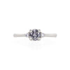 Love is All - 14k Polished White Gold Grey Diamond Ring