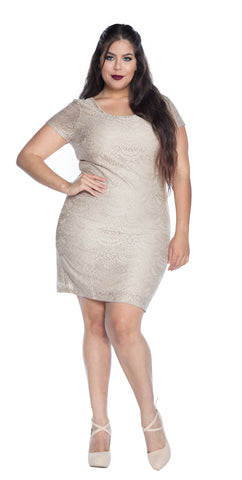 Plus Size Short Sleeve Lace Sheath Dress