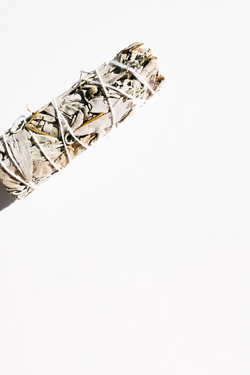 WHITE SAGE Smudge Stick - Apothecary Co.