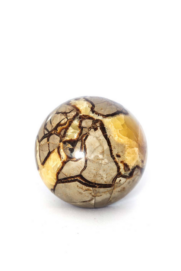 Septarian Dragon Sphere - Apothecary Co.