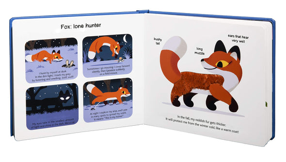 Touch and Explore: Animals at Night - Brambler Boutique