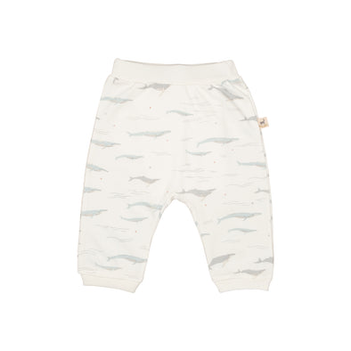 Organic Infant Pants - The Story - Passing Whales - Brambler Boutique