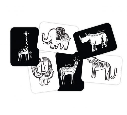 Art Flash Cards - Safari - Brambler Boutique