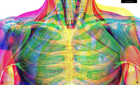 Illumanatomy: See Inside the Human Body with your Magic Three Color Lens - Brambler Boutique