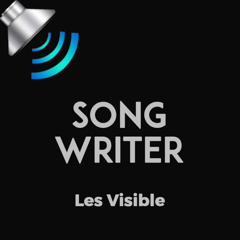 Songwriter by Les Visible