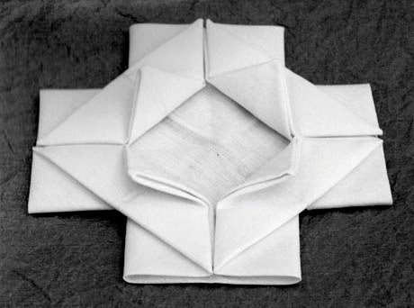 The Basic Rose fold,<i>The Beauty of the Fold: In Conversation with Joan Sallas,</i> Edited by Charlotte Birnbaum