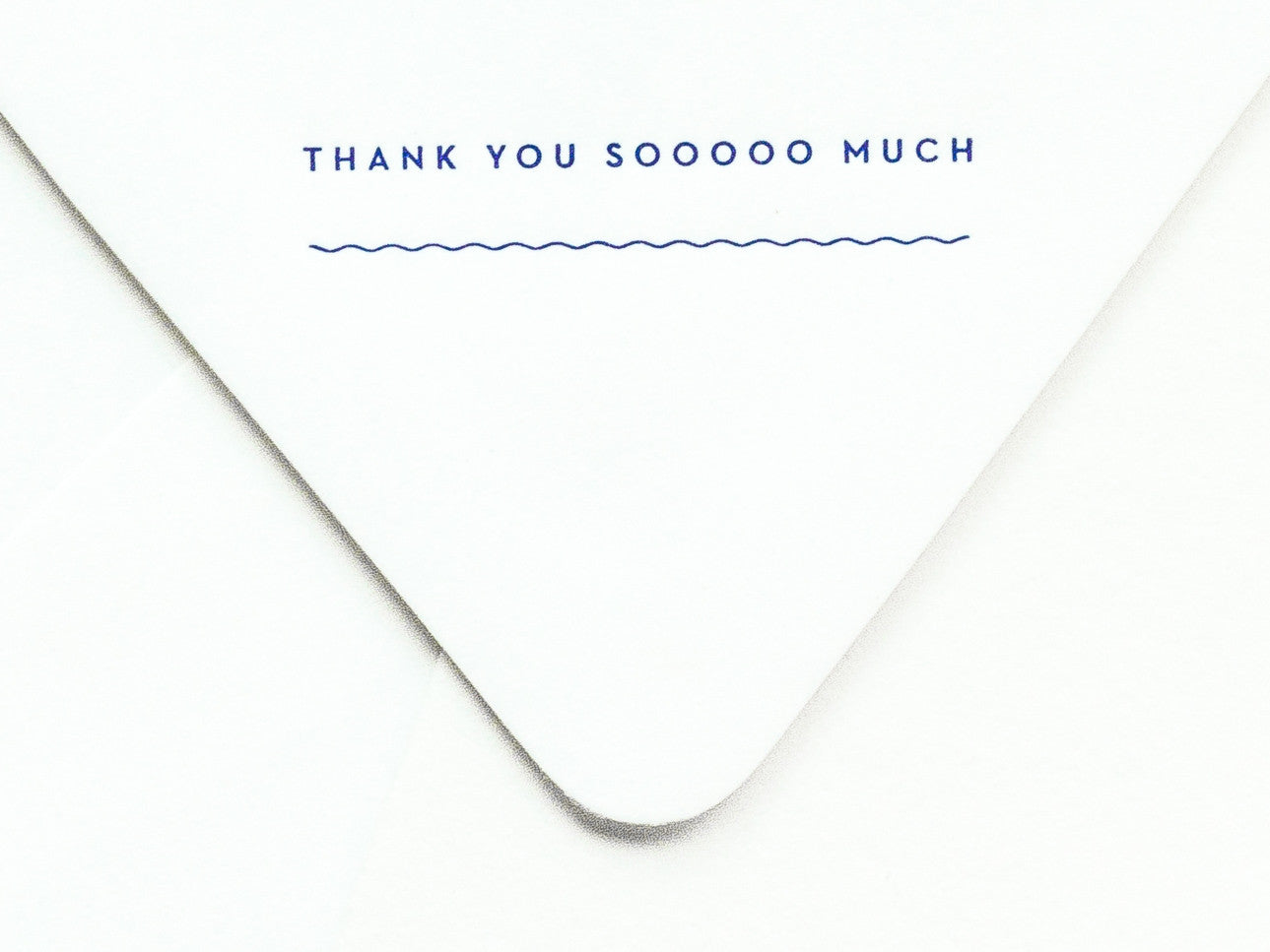 Thank You Sooooo Much Notevelope & Heart Notecard