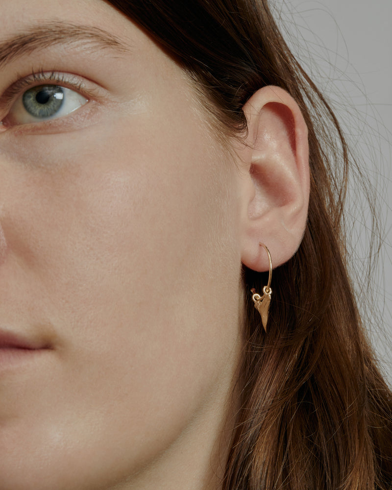 Fine Reef Shark Hoops Gold | Sarah & Sebastian onBody