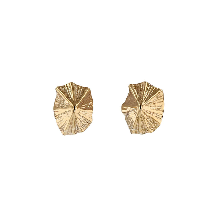 Limpet Earrings Yellow Gold | Sarah & Sebastian