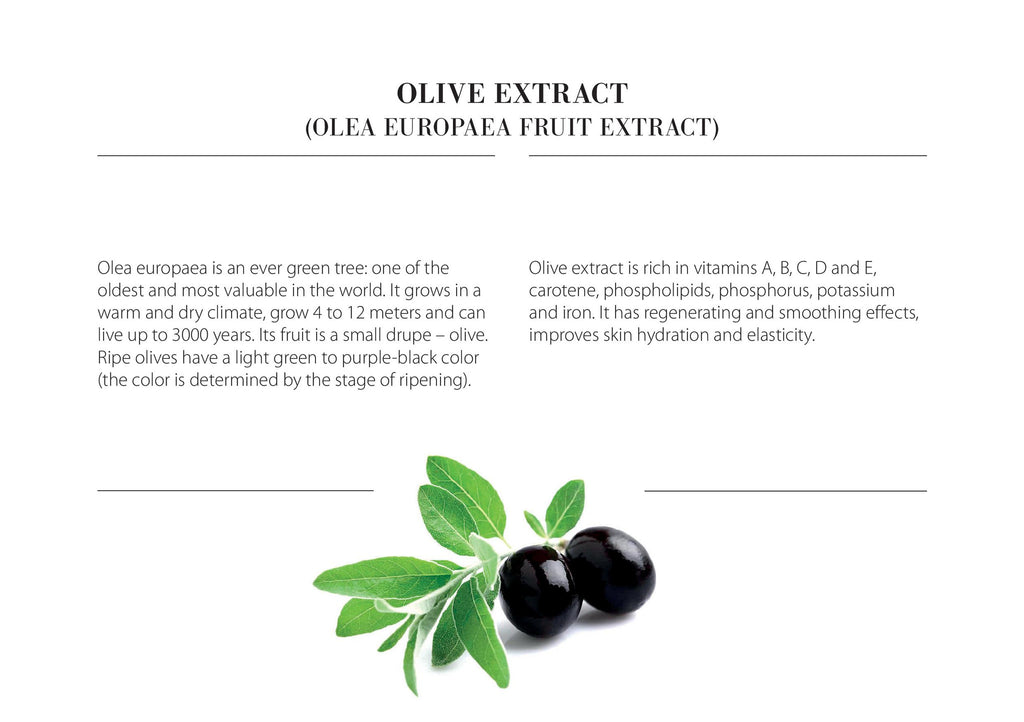 Dermo Expert Olive Oil
