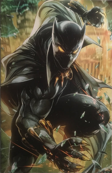 BLACK PANTHER (2018-) # 05 BATTLE LINES VARIANT COVER