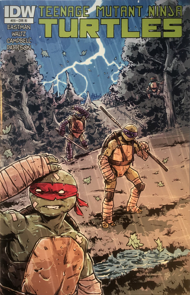 TMNT TEENAGE MUTANT NINJA TURTLES # 29 (1:10 VARIANT)
