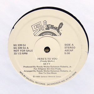 "SKYY ""Here's To You"" SOUL DISCO BOOGIE REISSUE 12"""