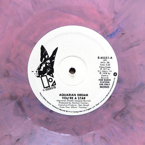 "AQUARIAN DREAM ""You're A Star"" RARE DISCO SOUL REISSUE 12"" COLOR VINYL"