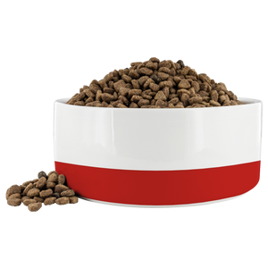 Open image in slideshow, Red Stripe • Pet Bowl