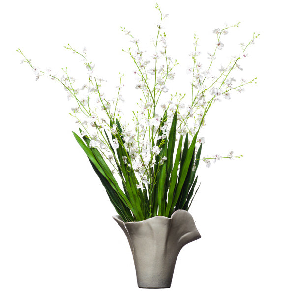 White Oncidium in Grey Ceramic