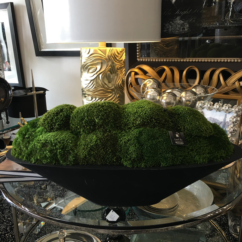Moss in a Contemporary Black Resin Container
